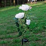 Crenze Rose Solarlichter, Beleuchtung Außen Solarleuchte Garten mit 3 LED Lampe, Außen Dekoration Lichter für den Garten/Rasen/Feld/Terrasse/Weg