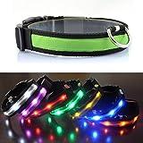 ShopSquare64 Hundehalsband, Nylon, LED, für den Außenbereich, Sicherheit bei Nacht, blinkt Nicht
