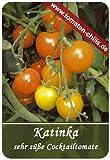 Katinka - Cocktailtomate