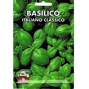 Vivai Le Georgiche BASILICO ITALIANO CLASSICO (GENOVESE) (SEMENTE)