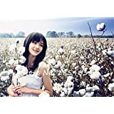 Semilla de algodón de alta calidad rara Bonsai blanca Gossypium semilla de flor del jardín de DIY plantas en maceta 30 Partículas envío