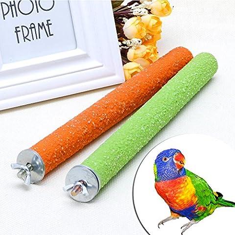 Dairyshop pour animal domestique Oiseau Parrot jouet à mâcher perruches Cage Paw meulage jouer support Perche 2,5x 25cm