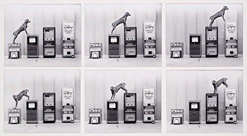 das-museum-outlet-william-wegman-ray-o-vac-leinwand-print-online-kaufen-1016-x-127-cm