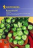 Sperli Gemüsesamen Rosenkohl Roodnerf, grün