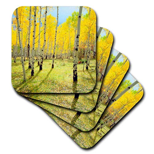 3dRose Danita Delimont-Bäume-USA, Colorado, Rocky Mountains. Fall Colors of Aspen Trees.-Untersetzer, Gummi, set-of-8-Soft Cst Fall