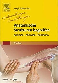 Anatomische Strukturen begreifen: palpieren - erkennen - behandeln