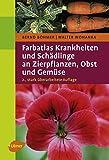 Farbatlas Krankheiten und Schädlinge an Zierpflanzen, Obst und Gemüse -