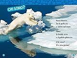 Orsi-polari-Livello-2-Ediz-a-colori