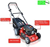 "Frisky Fox PLUS 20"" 5.5hp Self Propelled Petrol Lawn Mower 4 in 1 Mulching, Cutting, Collecting & Side Discharge Powered By 5.5HP 4-Stoke OHV Engine with Fitted Lawn Striper and 55L Grass Collection Bag"