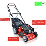 """Frisky Fox PLUS 20"""" 5.5hp Self Propelled Petrol Lawn Mower 4 in 1 Mulching, Cutting, Collecting & Side Discharge Powered By 5.5HP 4-Stoke OHV Engine with Fitted Lawn Striper and 55L Grass Collection Bag"""