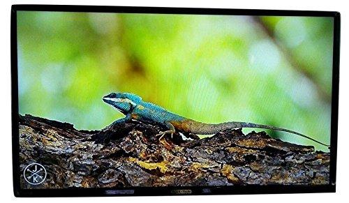 Bhavani Sales HD Ready TV 24 inch