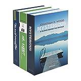 HMF 4312202 Safe, verborgen, in Form von Büchern, Größe XL, 22x 13x 15cm