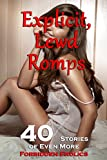 Explicit, Lewd Romps  (40 Stories of Even More Forbidden Frolics!)
