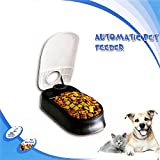 Walmeck Pawise Automatic Pet Feeder Dog Timing Feeder Pet Dry Food Dispenser Dish Bowl Feed Bowl 48 Hours Timer for Dog Cat Puppy Pet