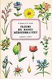 Fleurs du bassin méditerranéen