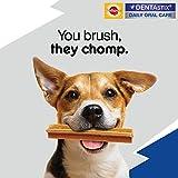 Pedigree DentaStix Hundesnack für mittelgroße Hunde (10-25kg), Zahnpflege-Snack mit Huhn und Rind, 10 Packungen je 7 Stück (10 x 180 g) - 7