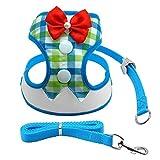 CWQYD Hundegeschirr Mesh Harness Nylon Breathable Harness Weste Pet Walking Harnesses Leine Set Für, Blau, L