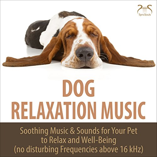 Relaxing Music & Crashing Waves for the Dog & Master, Low Pass Filter (16kHz)