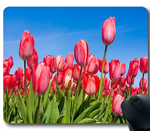 Fabulous Beautiful Tulips 220 x 180 x 2 MM gomma gioco ufficio mouse pad rosa rosso Spring Tulip Flower computer Gaming Mouse Mat W007 - Amazon Videogiochi