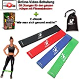 PrimaFit Fitnessbänder Set 4 Gymnastikbander Loops fur Yoga Pilates Crossfit Widerstandsbander Trainingsbander Muskelaufbau Rehabilitation Krankengymnastik Fitnessband Gummi Online-Videotraining