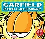 Garfield 2018: Original BrownTrout-Tagesabreißkalender