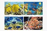 1x 3D Lesezeichen tropische Fische 15x5cm Tiere Wackelbild Wackelkarte Buchzeichen Bookmark Bücher Buch Fisch
