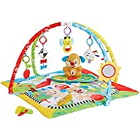 Fisher-Price Gym Learning Puppy (Mattel fbd48)