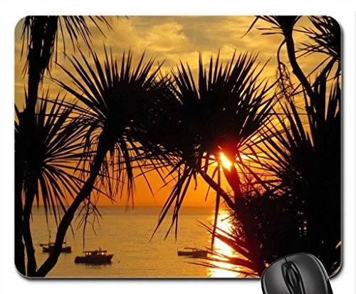st-ives-cornwall-in-the-evening-sun-set-dusk-over-ocean-cordyline-palm-trees-mouse-pad-mousepad-beac