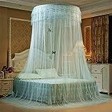 GXLXY Moskitonetz - Doppelbett, großes Mückennetz für Bett, feinste Löcher, Runde Form Netzvorhang Reise, Insektenschutz, 1 Einträge, einfache Anbringung, Tragetasche, Keine...