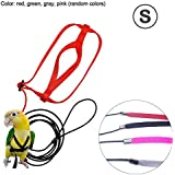 Pettorina Pappagallo, Parrot Leash Flying Anti-Bite Traction Rope Uccello Allenamento Outdoor Carrying Flight Rope, S/M/L (Colori Casuali)