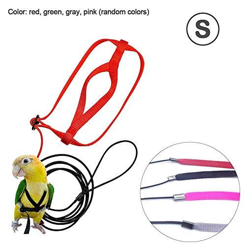 Pettorina Pappagallo, Parrot Leash Flying Anti-Bite Traction Rope Uccello Allenamento Outdoor Carrying Flight Rope, S/M/L (Colori Casuali)