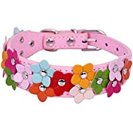 Pet Moon Soft Leather Dog Collar Flower Colour Padded Mulitple Colours (Pink, Mediem(11.5 - 15.2 in))