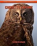 Chouette Lapone: Images étonnantes et faits amusants pour les enfants