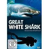 Great White Shark - Begegnung mit dem Killer