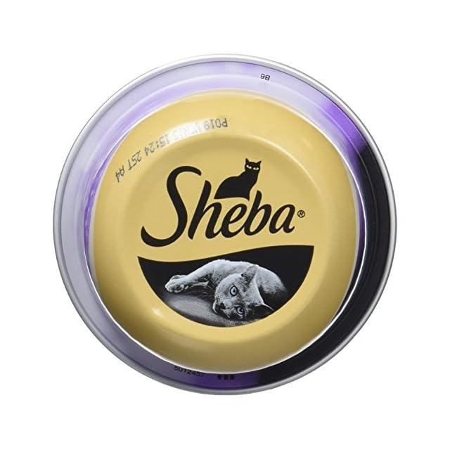 Sheba Dômes pour Chat Adulte - Friandise aux Filets de Thon et aux crevettes Roses en Sauce - Barquettes Snack 24 x 80g