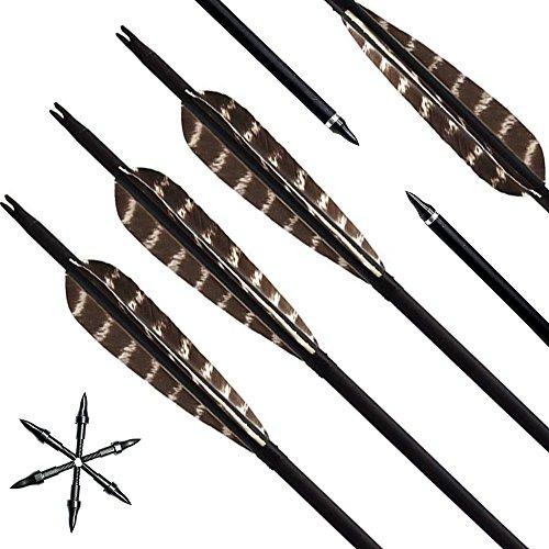 Lizac Pfeile für Bogenschießen, 31 Zoll Bogenpfeile Carbonpfeile mit Naturfeder,Jagdpfeile für Bogen, traditionellen Bogen, Recurvebogen und Langbogen, 12er set