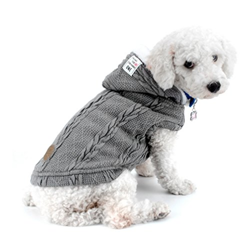 SMALLLEE_LUCKY_STORE Chaqueta suéter Perros Chaqueta