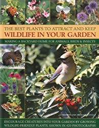 The Best Plants to Attract and Keep Wildlife in Your Garden: Making a backyard home for animals, birds & insects, encourage creatures into your garden ... friendly plants, shown in 400 photographs by Christine Lavelle (2011-01-16)