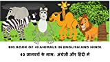 Learn Hindi: Big Book of 40 Animals in Hindi and English: Learn animal names in hindi and english