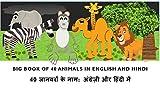 Learn Hindi:  Big Book of 40 Animals in Hindi and English: Learn animal names  in hindi and english