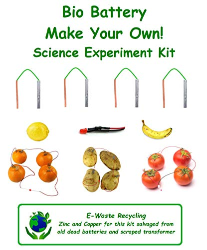 Inventions Fruit Vegetable Battery Bio Science Experiment Kit Make Your Own Battery