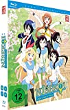Nisekoi - 2. Staffel - Vol. 1 + Sammelschuber [Limited Edition] [Blu-ray]