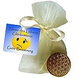 EnerChrom Blume des Lebens-Glücksmünze als Glücksbringer 'Gute Besserung' - Farbe: gold, 1 Stück im Säckchen als Geschenk - Lebensblume-Talisman