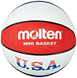 Molten Trainingsbasketball in USA-Farben
