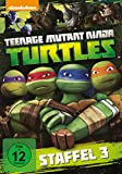 Teenage Mutant Ninja Turtles - Season 3 [4 DVDs]