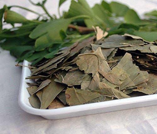 Naturix24 - foglie di ginkgo 100g