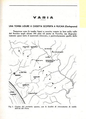 Una tomba ligure a cassetta scoperta a Filicaia (Garfagnana) .