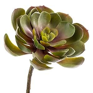 Cactus Echeveria artificiel, vert-rouge, 14 cm, Ø 17 cm - Cactus artificiel / Plante succulente artificielle - artplants