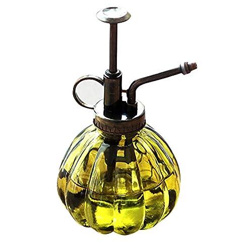 Wasser Spray Flasche Vintage Kürbis Stil Deko Glas Pflanzen Wasser