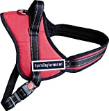 Hundegeschirr SCHWARZ / ROT SportsDog harness set hochwertig Brustgeschirr Powergeschirr (L: (65-82cm) Rot)